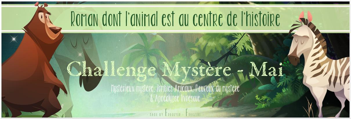 Challenge mystere mai