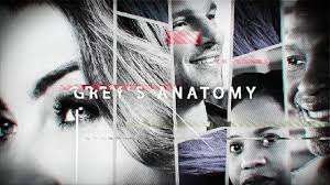 Grey s anatomy s14